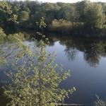 Рыбалка в Курской области на реке Сейме