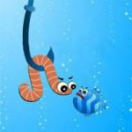 Самая уловистая наживка для всех рыб