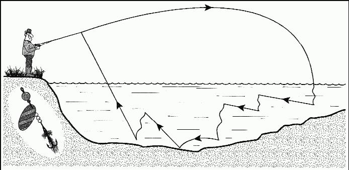 способы проводок при ловле щуки