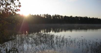 Осенняя рыбалка на водоёмах России